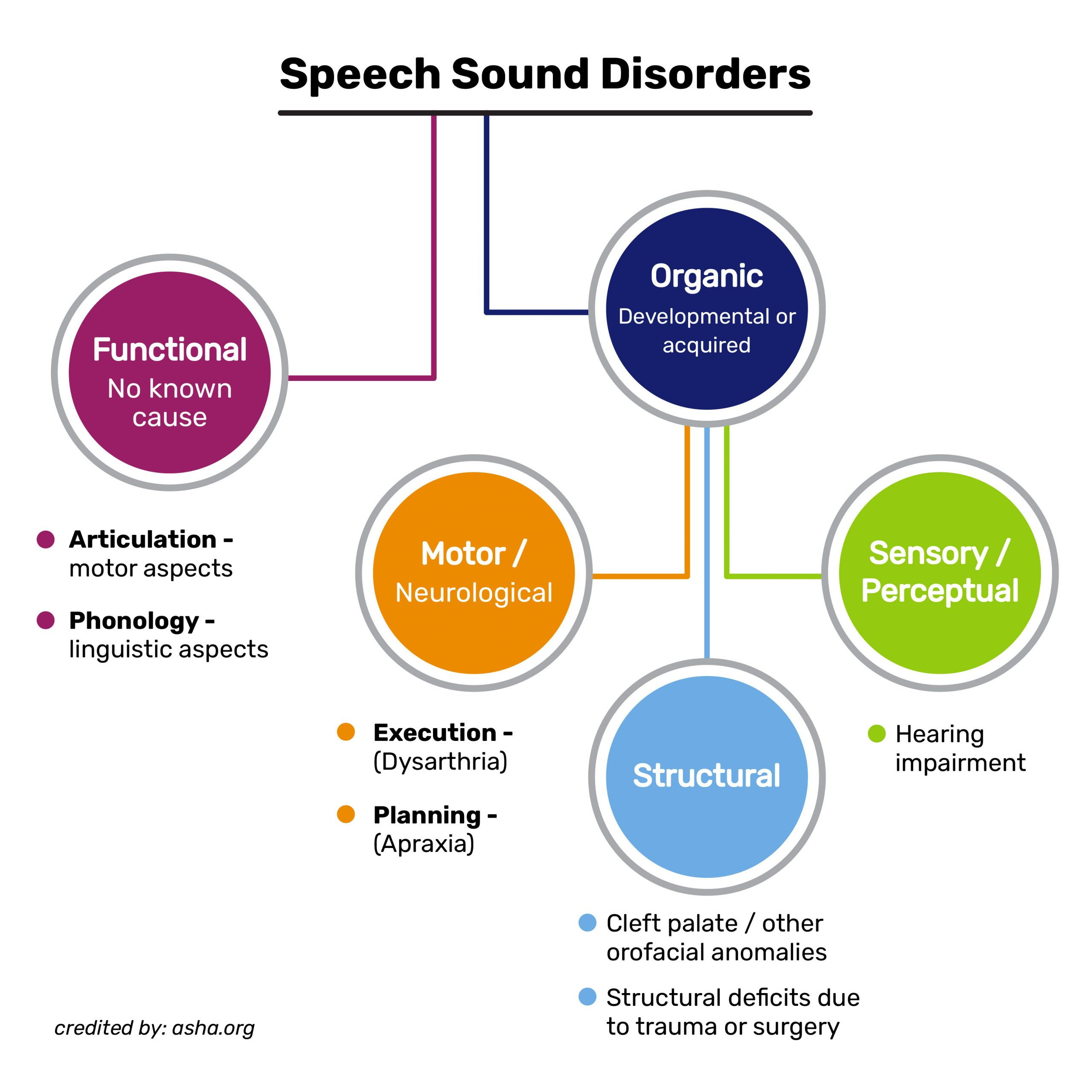 What is Speech Therapy?, Brooklyn Letters