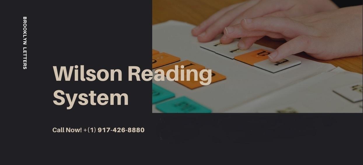 New Jersey Wilson Reading and Orton-Gillingham Tutoring Tutors, Brooklyn Letters