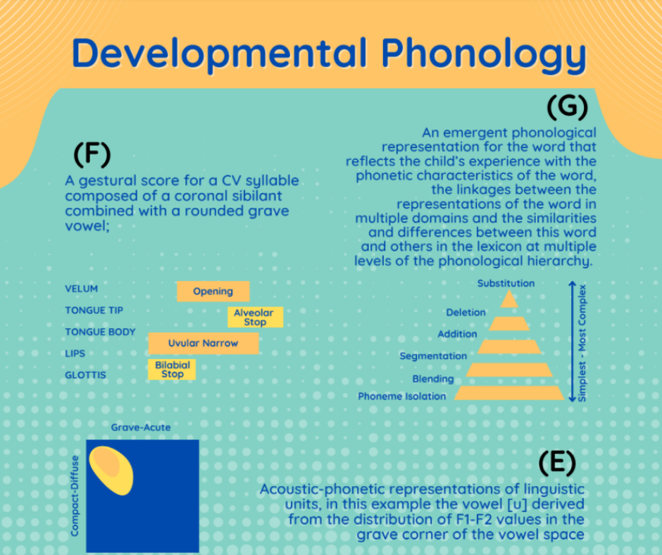 👉🔥😁What is Phonology?😁👈